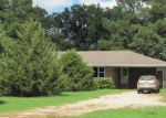 Foreclosed Home en BAYOU DEVIEW RD, Weiner, AR - 72479