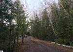 Foreclosed Home en S SKYLINE DR, Cedar, MI - 49621