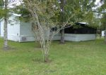 Foreclosed Home en S US HIGHWAY 17, Satsuma, FL - 32189