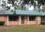 Foreclosed Home en PARRISH ST, Cottondale, FL - 32431