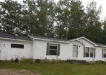 Foreclosed Home en HENDERSON LAKE RD, Prescott, MI - 48756