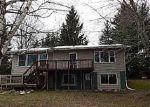 Foreclosed Home en 13 MILE RD, Leroy, MI - 49655