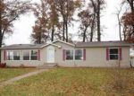 Foreclosed Home en KEYESPORT RD, Pocahontas, IL - 62275