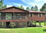 Foreclosed Home en SPRUCE AVE, Wewahitchka, FL - 32465