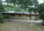 Foreclosed Home en OLDS DR, Hawthorne, FL - 32640