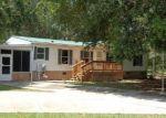 Foreclosed Home en BAYLOR AVE, Hastings, FL - 32145