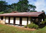 Foreclosed Home en AWEOWEO ST, Pahoa, HI - 96778