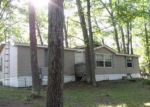 Foreclosed Home en MAPLEWOOD DR, Roscommon, MI - 48653