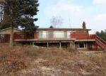 Foreclosed Home en MARTUS RD, North Branch, MI - 48461