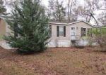 Foreclosed Home en SAND BASIN RD, Grand Ridge, FL - 32442