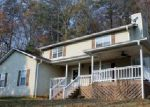 Foreclosed Home en SWEETEN CREEK RD, Robbinsville, NC - 28771