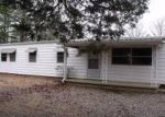 Foreclosed Home en RIDGE RD, New Concord, KY - 42076