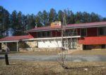 Foreclosed Home en JAY BIRD SPRINGS RD, Chauncey, GA - 31011