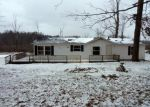 Foreclosed Home en 118TH AVE, Fennville, MI - 49408