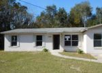 Foreclosed Home en BRAEBURY DR, Leesburg, FL - 34748