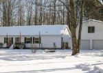 Foreclosed Home en CINDER RD, Beulah, MI - 49617