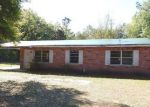 Foreclosed Home en JOE EBERT RD, Seffner, FL - 33584