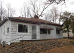 Foreclosed Home en W BELLE AVE, Saint Charles, MI - 48655