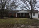 Foreclosed Home en OLD JACKS CREEK RD, Henderson, TN - 38340