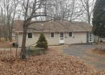 Foreclosed Home en LENAPE RD, East Stroudsburg, PA - 18302