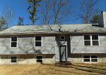 Foreclosed Home en DOE DR, Dingmans Ferry, PA - 18328