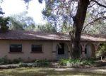 Foreclosed Home en SE 225TH DR, Hawthorne, FL - 32640