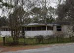 Foreclosed Home en COOK CIR, Vernon, FL - 32462