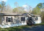 Foreclosed Home en JOAN AVE, Middleburg, FL - 32068