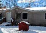 Foreclosed Home en S SHERIDAN AVE, Baldwin, MI - 49304