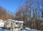 Foreclosed Home en GLENWOOD MT RD, Sussex, NJ - 07461