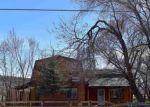 Foreclosed Home en NE INDIAN CAMP AVE, Cedaredge, CO - 81413