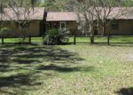 Foreclosed Home en LUNDY DIRT RD, Palatka, FL - 32177