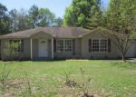 Foreclosed Home en EDGE PERRY RD, Crestview, FL - 32539
