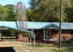 Foreclosed Home en NW KENMORE GLN, Lake City, FL - 32055