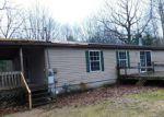 Foreclosed Home en N SHERMAN RD, Ludington, MI - 49431