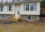 Foreclosed Home en BRIARWOOD RD, East Stroudsburg, PA - 18302
