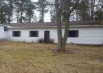 Foreclosed Home en N COMSTOCK AVE, Bitely, MI - 49309