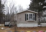 Foreclosed Home en SWINSON NEUMAN RD, Rhodes, MI - 48652