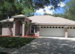 Foreclosed Home en WINDBRUSH DR, Tampa, FL - 33625