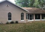 Foreclosed Home en N HARBOR DR, Deltona, FL - 32725