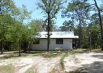 Foreclosed Home en QUAIL RIDGE DR, Chipley, FL - 32428
