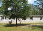 Foreclosed Home en CAMELIA ST, Fountain, FL - 32438