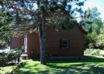 Foreclosed Home en W PERCH LAKE RD, Winter, WI - 54896