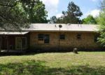 Foreclosed Home en JASON ST, Clinton, AR - 72031