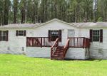 Foreclosed Home en MAYHAW LN, Chipley, FL - 32428