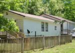 Foreclosed Home en 9 MILE RIDGE RD, Hardy, AR - 72542