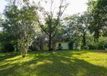 Foreclosed Home en WISTERIA LN, Middleburg, FL - 32068