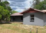 Foreclosed Home en S PALMER AVE, Avon Park, FL - 33825