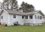 Foreclosed Home en IRON LAKE RD, Iron River, MI - 49935