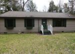 Foreclosed Home en N RIVERVIEW RD, Hessel, MI - 49745